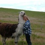 llama rescue center